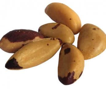 1LB BRAZIL NUTS