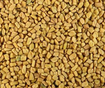1LB FENUGREEK SEED WHOLE