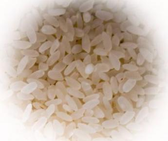 1LB SHORT GRAIN WH. RICE